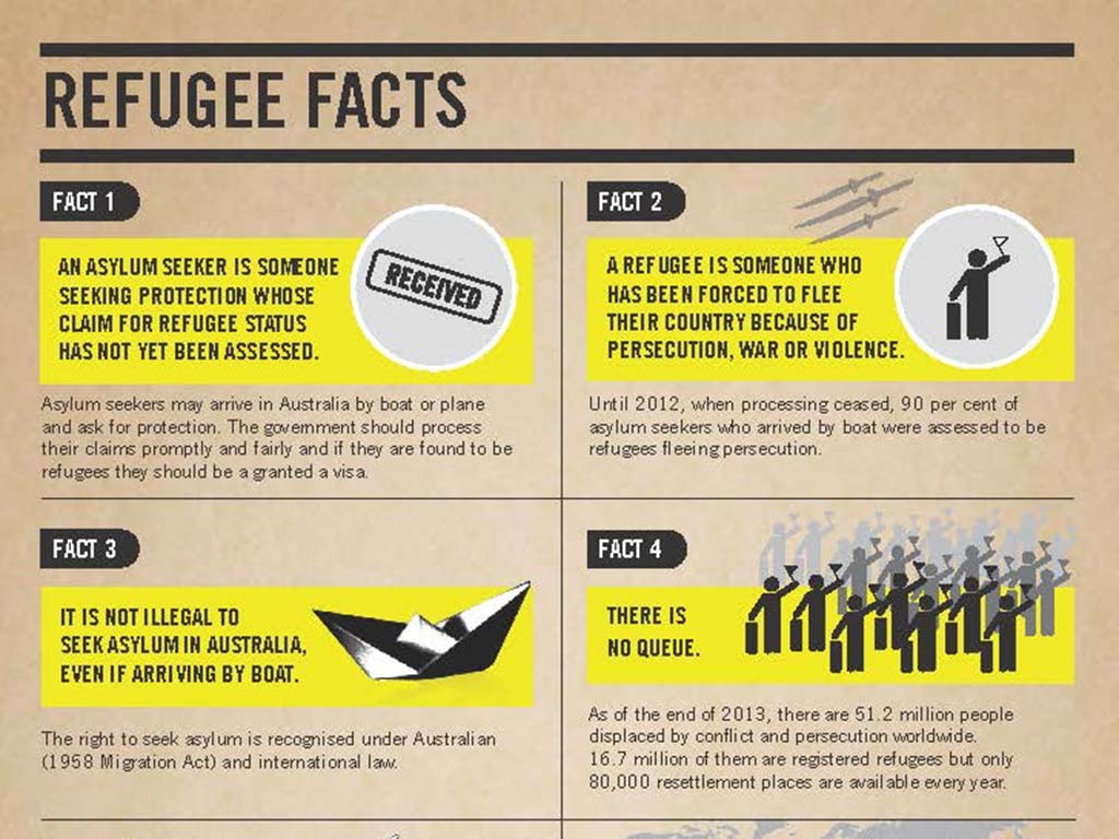 cropped image of Amnesty International's Fact Sheet